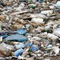 unprocessed refuse derived fuel